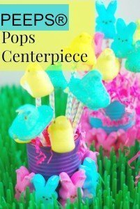 PEEPS® Pops Centerpiece