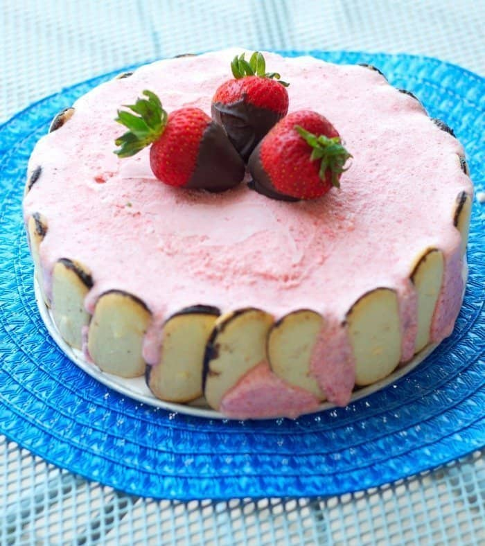 Chocolate-Strawberry Semifreddo