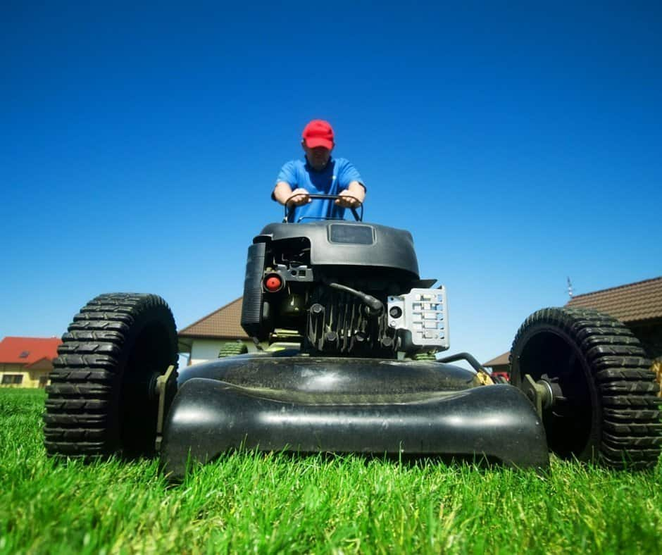 5 tips for a beautiful green lawn an alli event for How often should you mow your lawn