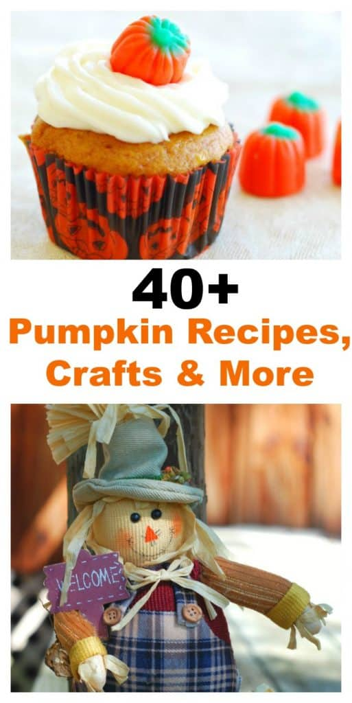 Some of the top bloggers have come together to bring you 40+ of the best Pumpkin Recipes, Crafts and More. There's something for everyone. #SoFabSeasons