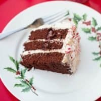 Chocolate Cake with Vanilla Frosting & Candy Cane Forest