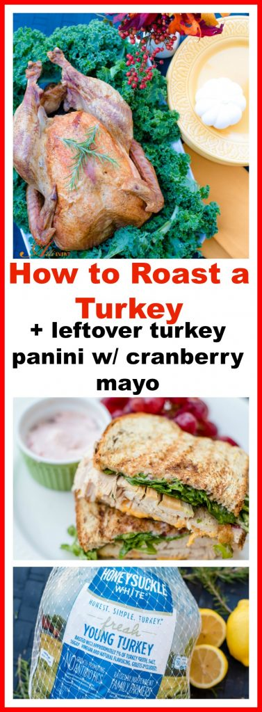 ... Tagged With: Cranberry Mayo , How to Roast a Turkey , Turkey Panini's