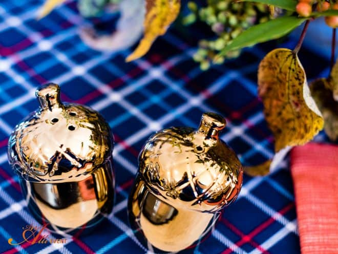 Acorn Salt and Pepper Shakers - Cozy Rustic Thanksgiving