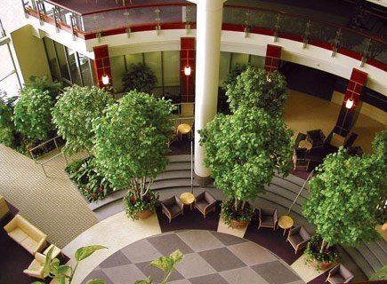 interior landscaping office.  landscaping interior landscaping and office r