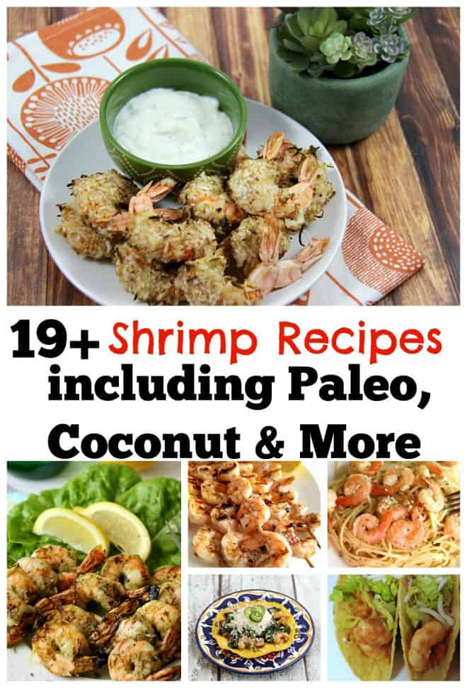 19 Shrimp Recipes including Paleo, Coconut Rum and More.
