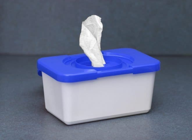Wet Wipes - Essentials for Traveling with Kids