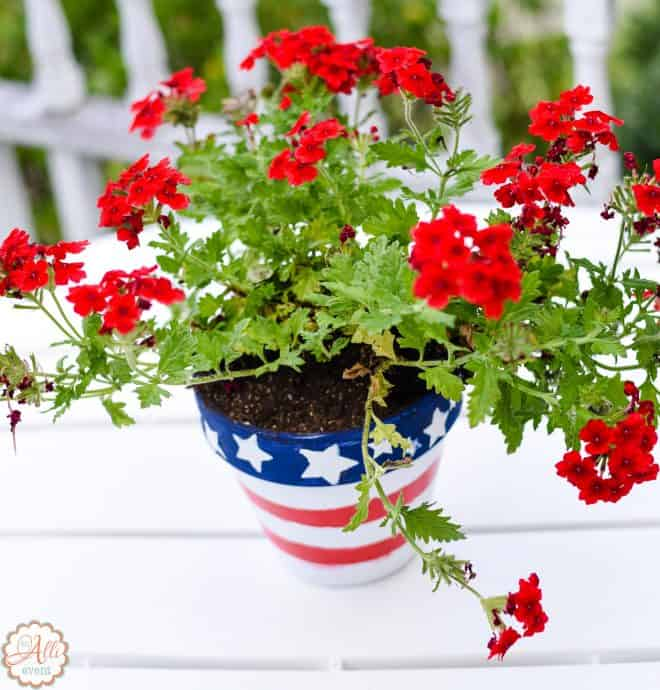 Patriotic Centerpiece & Blackberry Glazed Grilled Ribs