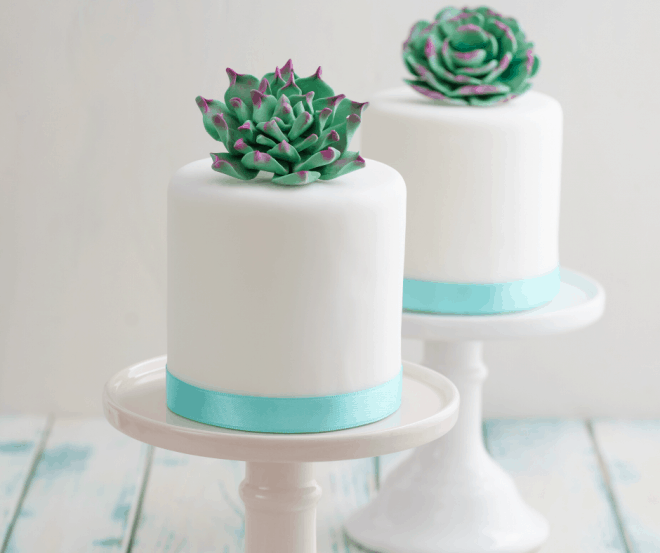 wedding cake topped with succulents