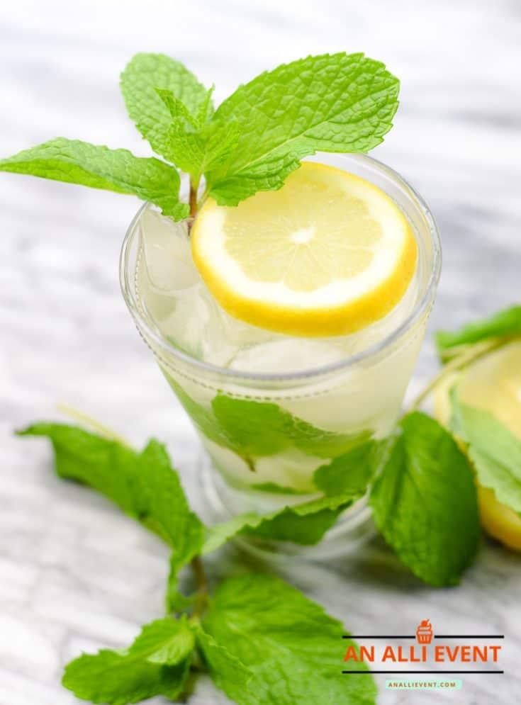 Mint Julep Mocktail Recipe