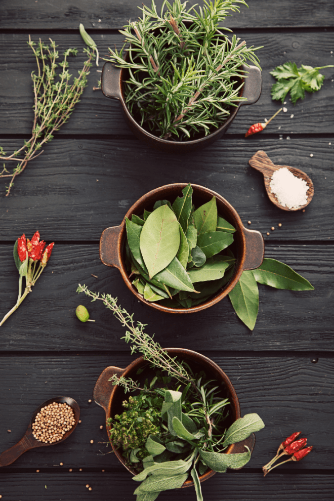 How to Grow & Style a Herb Garden