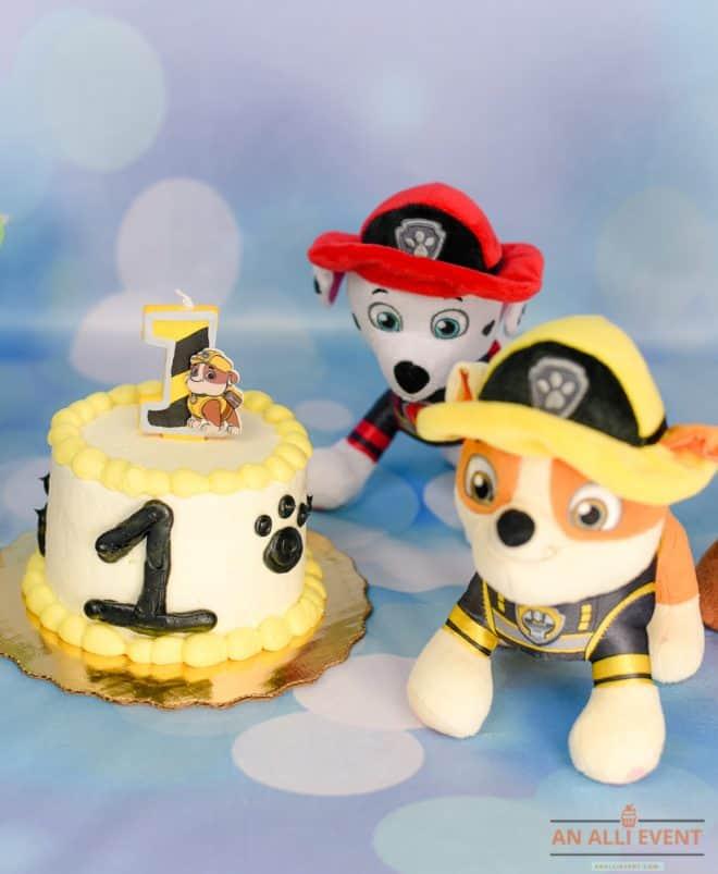 Paw Patrol Smash Cake Photo Shoot