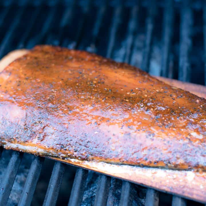 Salmon Fillet on Grill