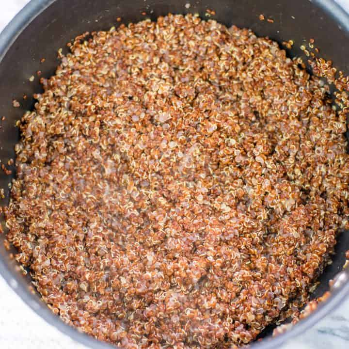 Red Quinoa Ready to Serve