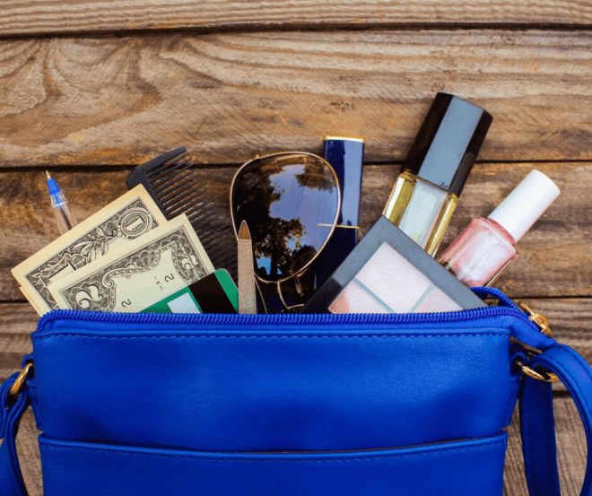 Purge Your Purse Game