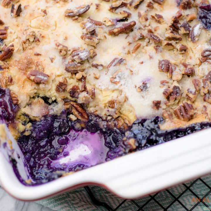 Close Up View of Blueberry Crunch Dessert