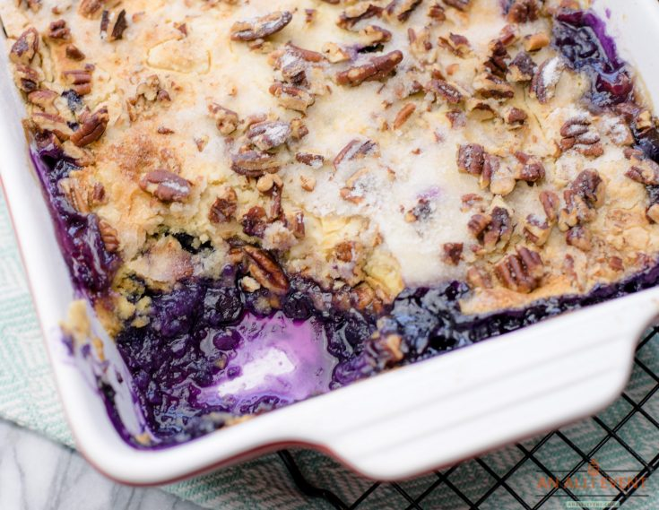 Close Up View of Blueberry Crunch Dessert