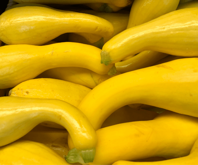 Yellow Squash In A Pile