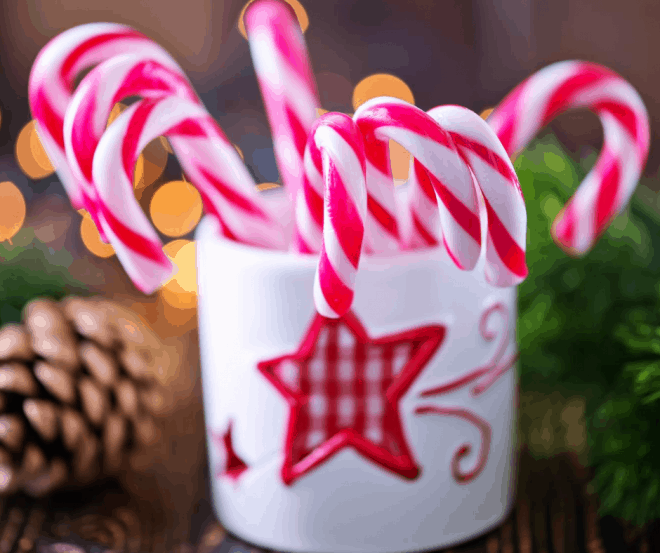 red and white candy canes in a white cup with a red plaid star on the front